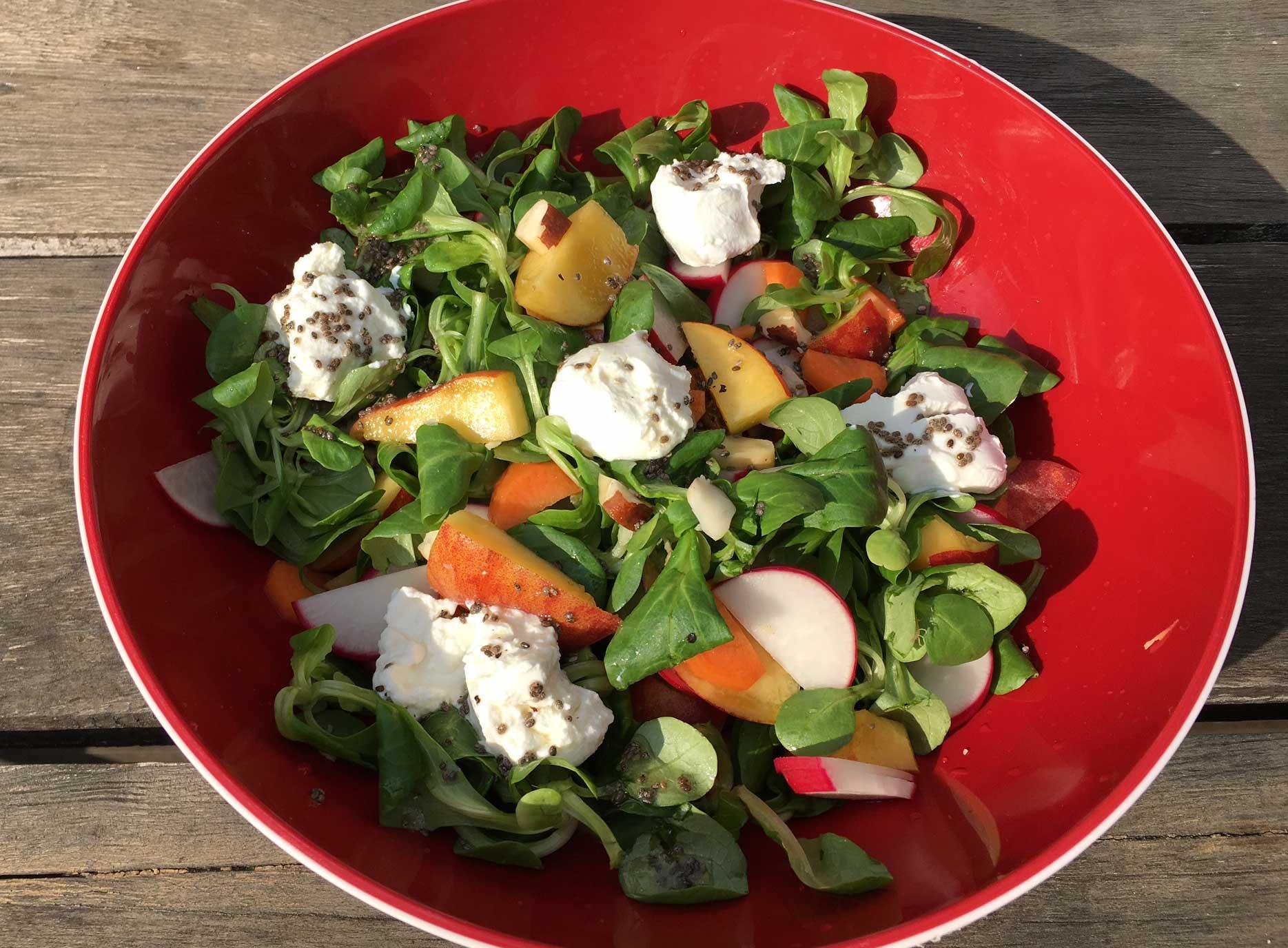 Sigrid_S_Pfirsich-Salat_quer